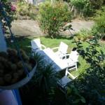 Selon la saison, vous pourrez profiter des arbres fruitiers du jardin : citrons, avocats, caramboles, cerises pays, et maracudjas