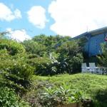 Bienvenue à Ferry, nous sommes tout proches de Deshaies, à proximité du Jardin Botanique.